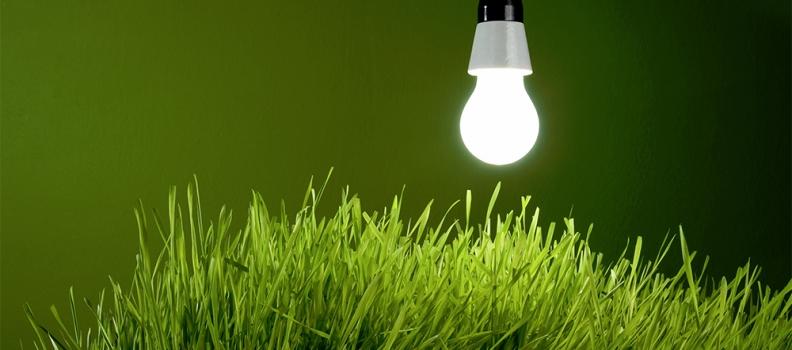 Първото от поредицата обучения за зелени иновации на CEED ще се проведе в гр. Бургас на 25-26 февруари